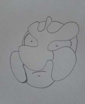 doodle5_complete